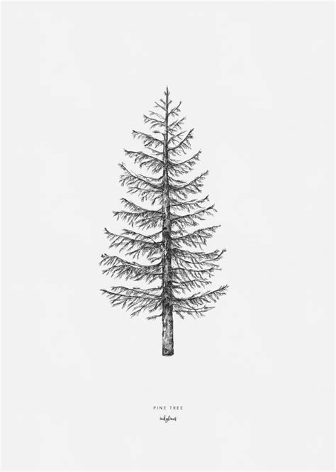 How To Draw A Small Pine Tree